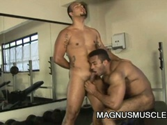 Muscle studs teasing each others cock