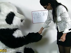 panda bear loves his teacher