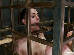 cutie in a cage needs her castigation
