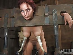 ashley in shackles acquires tits milked