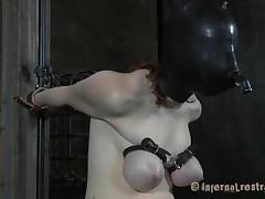 her torment has no limits