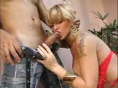 Tranny fishes out his dick and sucks it